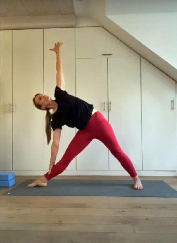 iyengar yoga unterricht via zoom